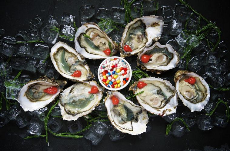 Huîtres triploïdes des huîtres génétiquement trafiquées