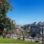 Visiter Genève en une journée Musée d'art et d'histoire 1