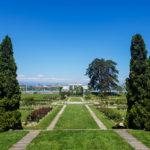 Visiter Genève en une journée roseraie du parc de la Grange 4