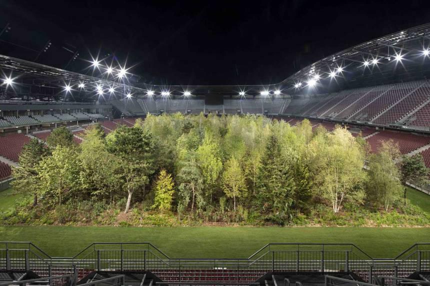 une forêt dans un stade de 30 000 personnes