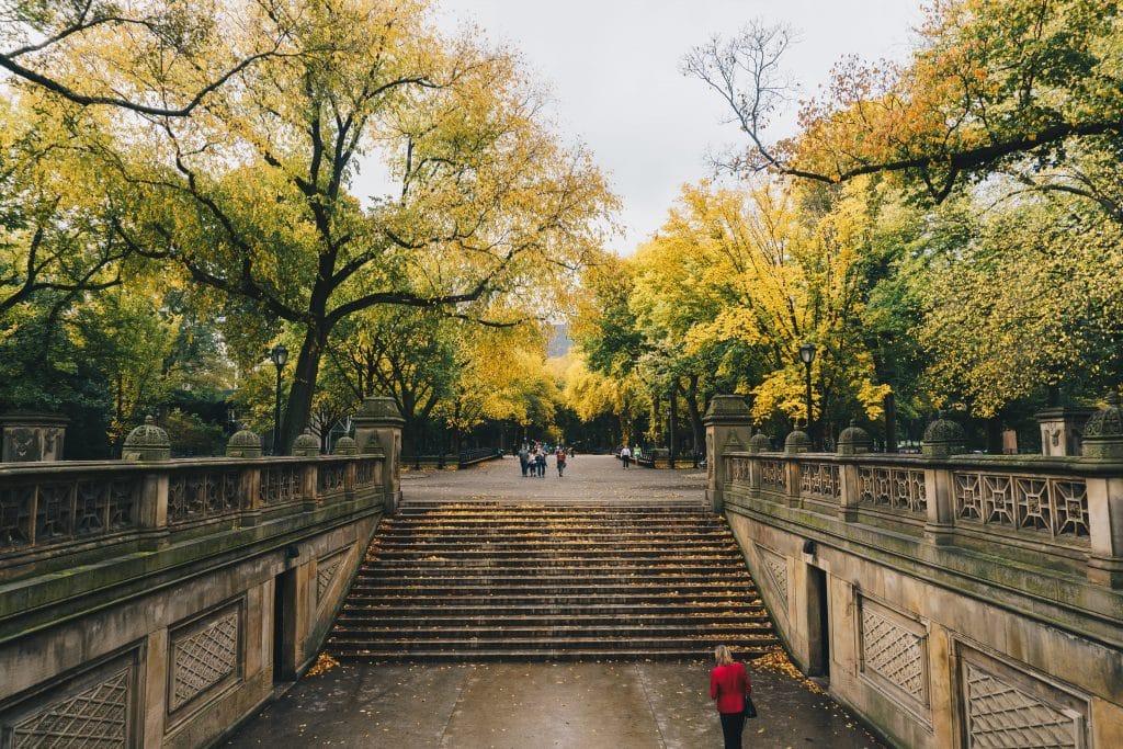 Voyager virtuellement dans Central Park à New York