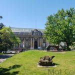 Visiter Genève en une journée Musée d'art et d'histoire