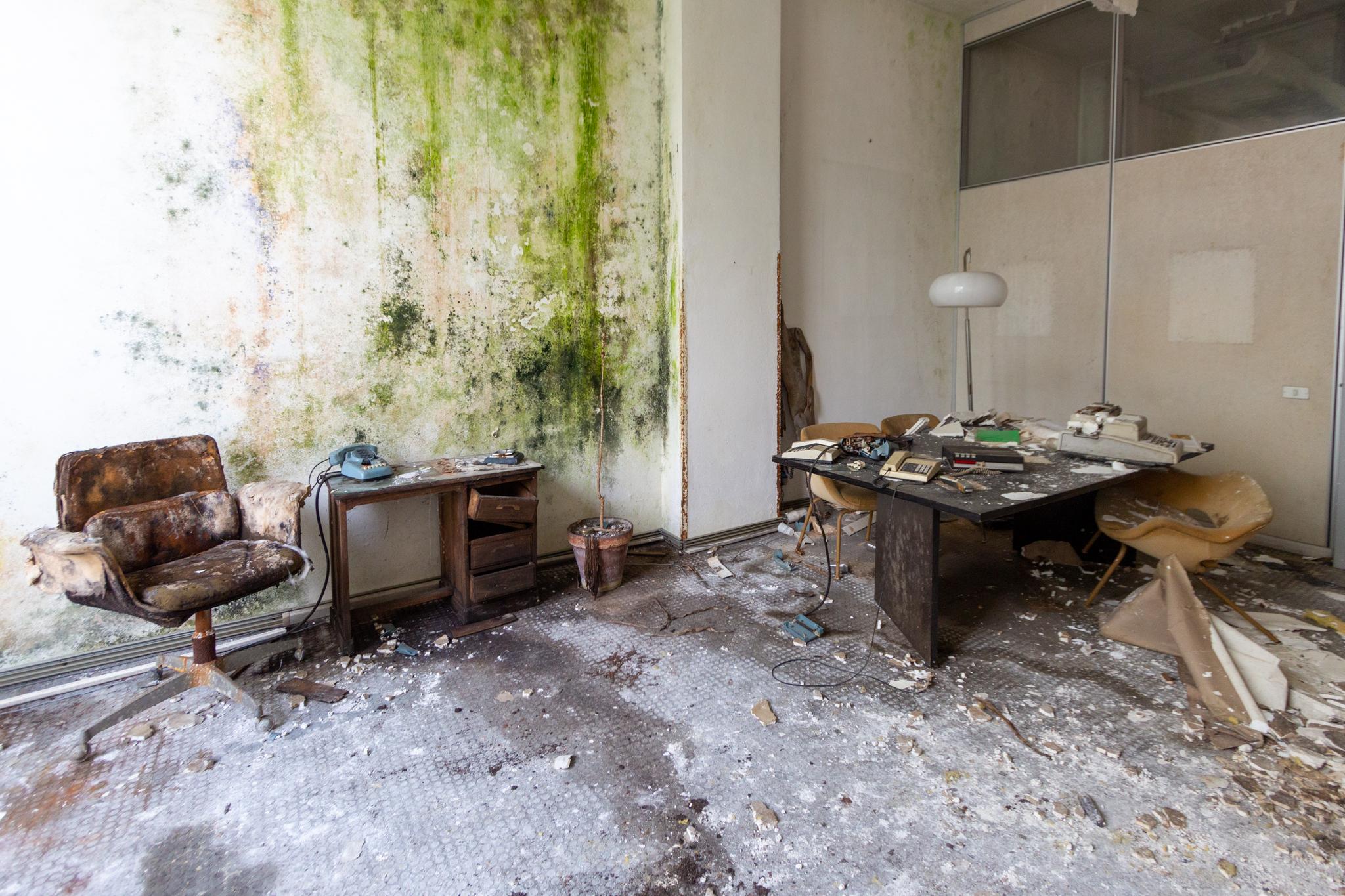 Ruine, redécouverte et remise en état